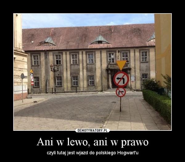 Ani w lewo, ani w prawo – czyli tutaj jest wjazd do polskiego Hogwart'u