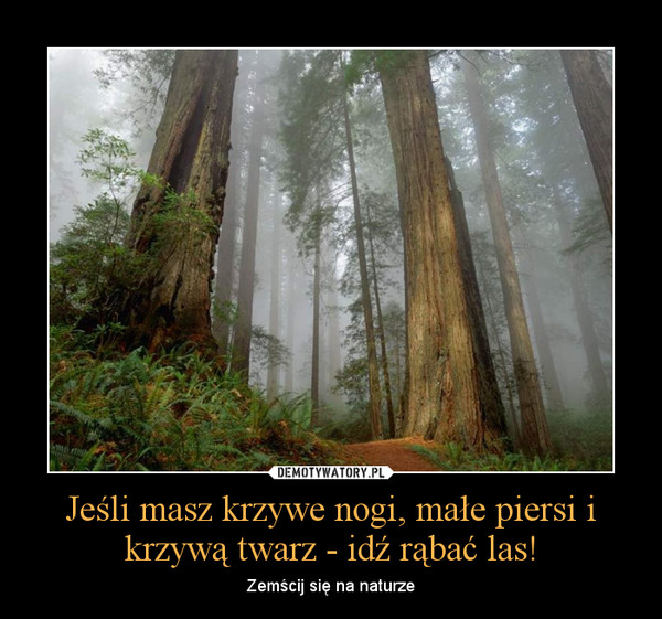 Jeśli masz krzywe nogi, małe piersi i krzywą twarz - idź rąbać las! – Zemścij się na naturze