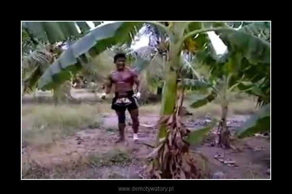 Zawodnik Muay Thai vs Bananowiec –