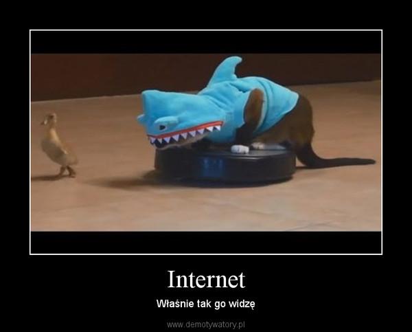 Internet – Właśnie tak go widzę