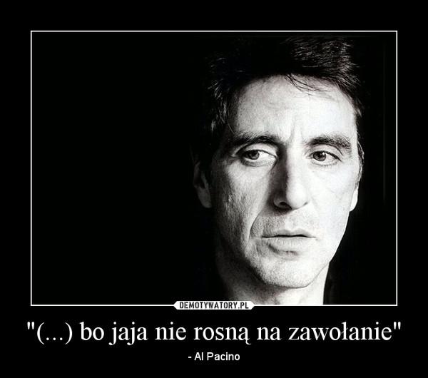 """""""(...) bo jaja nie rosną na zawołanie"""" – - Al Pacino"""