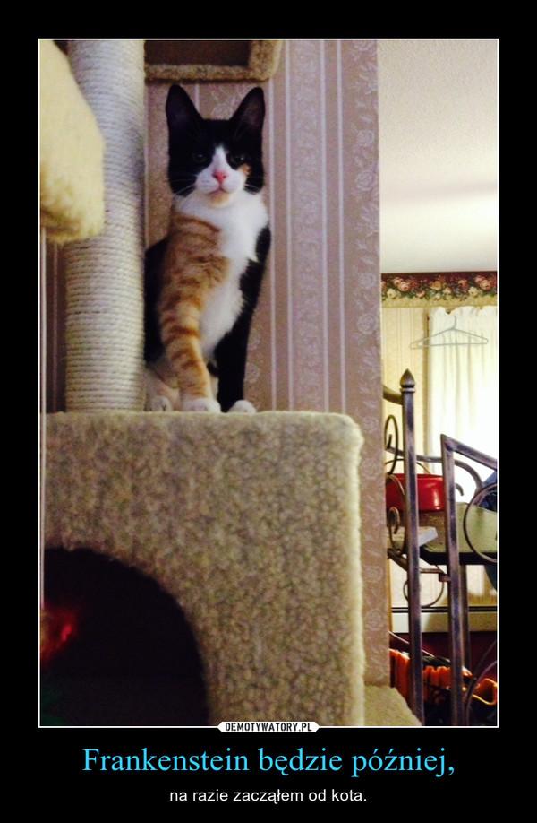 Frankenstein będzie później, – na razie zacząłem od kota.