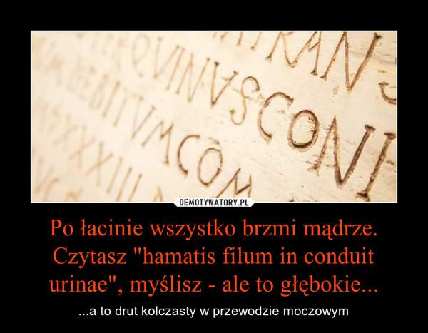 """Po łacinie wszystko brzmi mądrze. Czytasz """"hamatis filum in conduit urinae"""", myślisz - ale to głębokie... – ...a to drut kolczasty w przewodzie moczowym"""