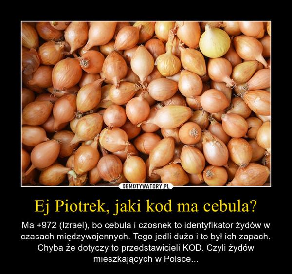 Ej Piotrek, jaki kod ma cebula? – Ma +972 (Izrael), bo cebula i czosnek to identyfikator żydów w czasach międzywojennych. Tego jedli dużo i to był ich zapach. Chyba że dotyczy to przedstawicieli KOD. Czyli żydów mieszkających w Polsce...