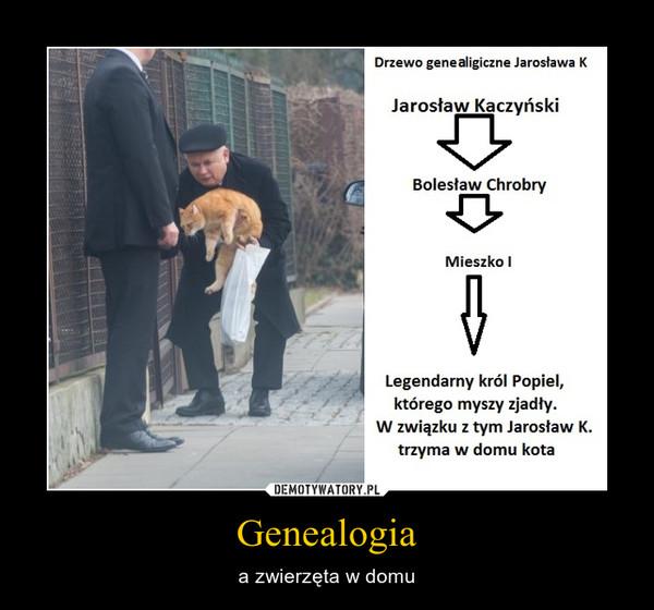 Genealogia – a zwierzęta w domu