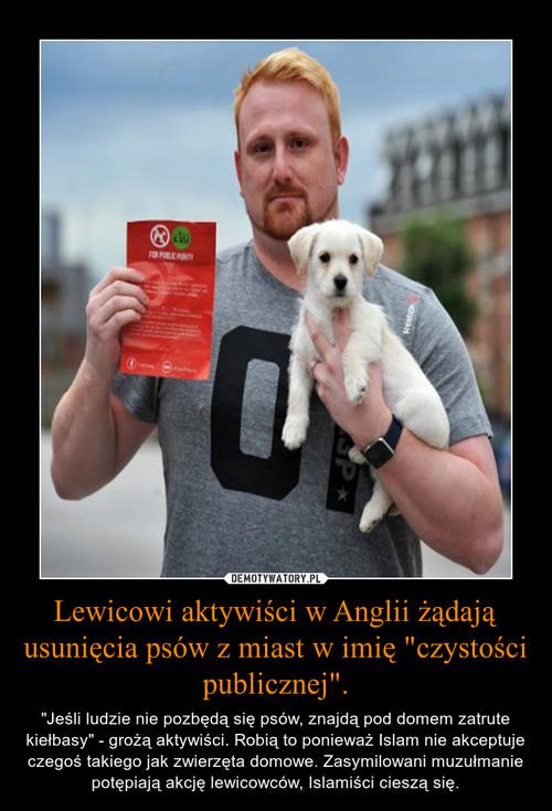 """Lewicowi aktywiści w Anglii żądają usunięcia psów z miast w imię """"czystości publicznej""""."""