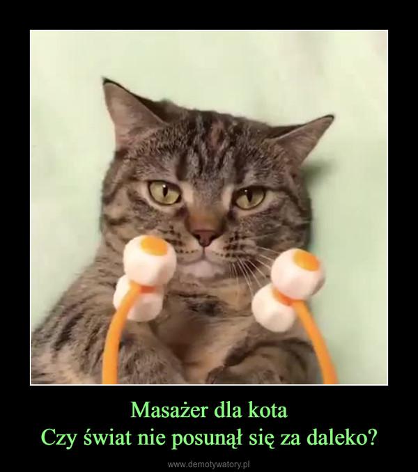 Masażer dla kotaCzy świat nie posunął się za daleko? –