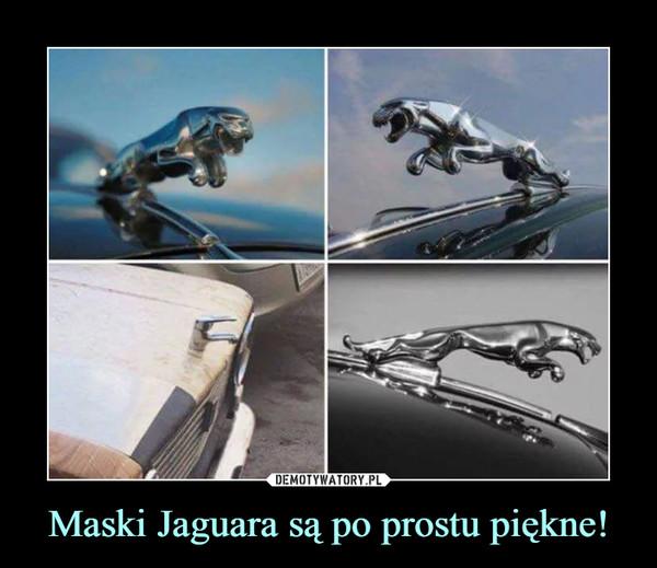 Maski Jaguara są po prostu piękne! –