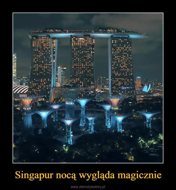 Singapur nocą wygląda magicznie –