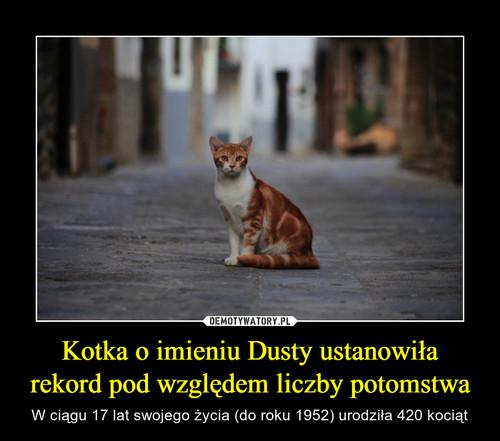 Kotka o imieniu Dusty ustanowiła rekord pod względem liczby potomstwa