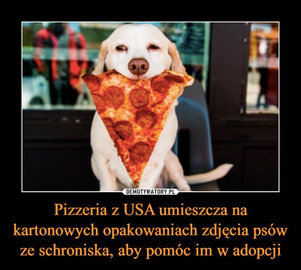 Pizzeria z USA umieszcza na kartonowych opakowaniach zdjęcia psów ze schroniska, aby pomóc im w adopcji –