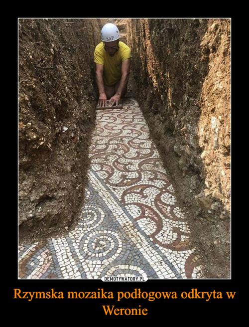 Rzymska mozaika podłogowa odkryta w Weronie