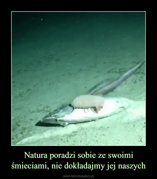 Natura poradzi sobie ze swoimi śmieciami, nie dokładajmy jej naszych –