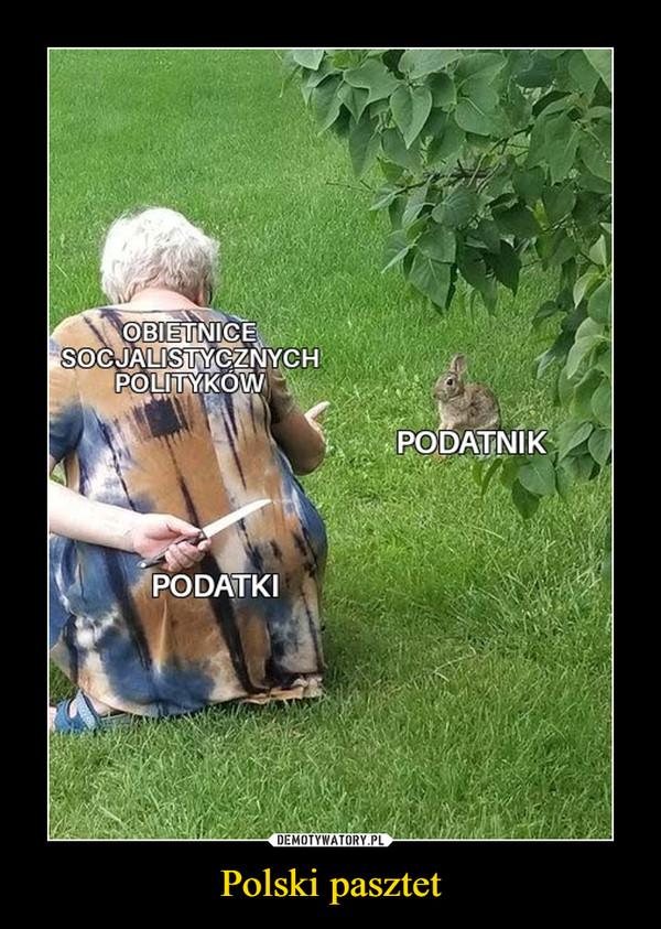 Polski pasztet –  OBIETNICE SOCJALISYCZNYCH POLITYKÓWPODATNIKPODATKI