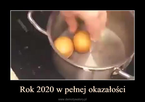 Rok 2020 w pełnej okazałości –