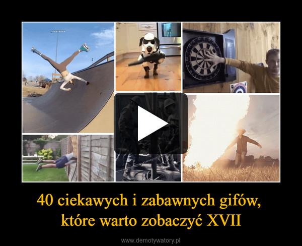 40 ciekawych i zabawnych gifów, które warto zobaczyć XVII –