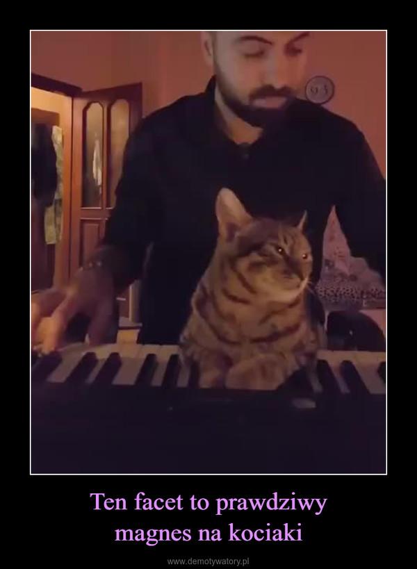 Ten facet to prawdziwymagnes na kociaki –