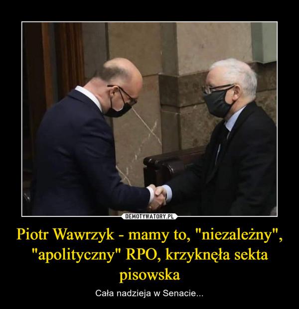"""Piotr Wawrzyk - mamy to, """"niezależny"""", """"apolityczny"""" RPO, krzyknęła sekta pisowska – Cała nadzieja w Senacie..."""