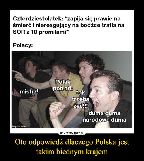 Oto odpowiedź dlaczego Polska jest takim biednym krajem