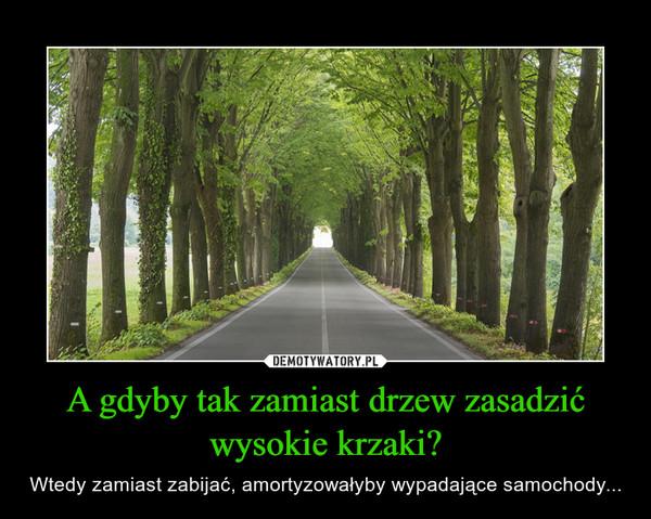 A gdyby tak zamiast drzew zasadzić wysokie krzaki? – Wtedy zamiast zabijać, amortyzowałyby wypadające samochody...