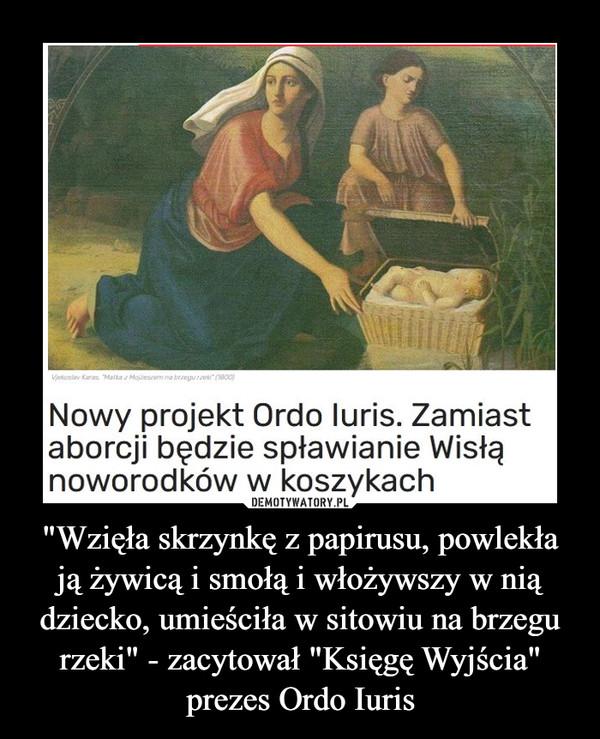 """""""Wzięła skrzynkę z papirusu, powlekła ją żywicą i smołą i włożywszy w nią dziecko, umieściła w sitowiu na brzegu rzeki"""" - zacytował """"Księgę Wyjścia"""" prezes Ordo Iuris –"""
