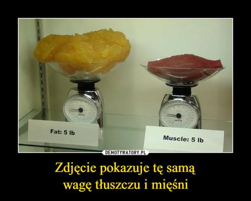 Zdjęcie pokazuje tę samą wagę tłuszczu i mięśni