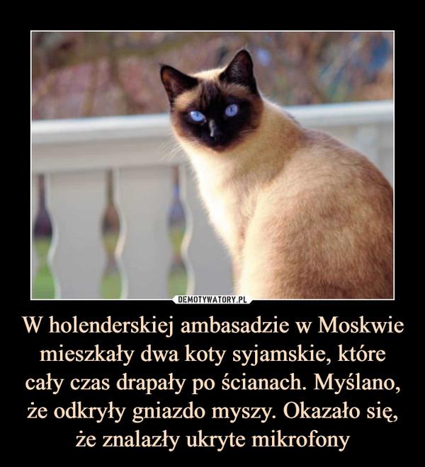 W holenderskiej ambasadzie w Moskwie mieszkały dwa koty syjamskie, które cały czas drapały po ścianach. Myślano, że odkryły gniazdo myszy. Okazało się, że znalazły ukryte mikrofony –