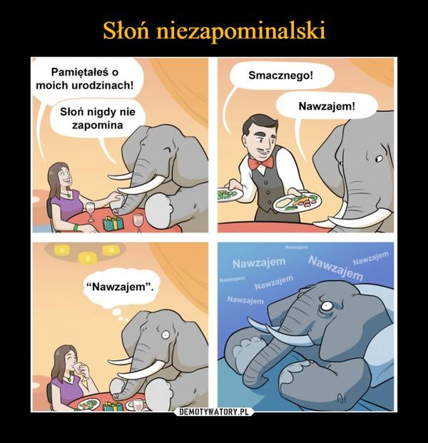 """–  Pamiętałeś oSmacznego!moich urodzinach!Nawzajem!Słoń nigdy niezapominaNawzajemNawzajemNawzajemNawzajemNawzajem""""Nawzajem"""".NawzajemNawzajem"""