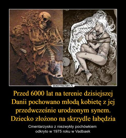 Przed 6000 lat na terenie dzisiejszej Danii pochowano młodą kobietę z jej przedwcześnie urodzonym synem. Dziecko złożono na skrzydle łabędzia