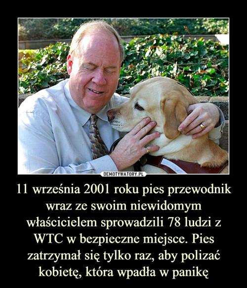 11 września 2001 roku pies przewodnik wraz ze swoim niewidomym właścicielem sprowadzili 78 ludzi z WTC w bezpieczne miejsce. Pies zatrzymał się tylko raz, aby polizać kobietę, która wpadła w panikę