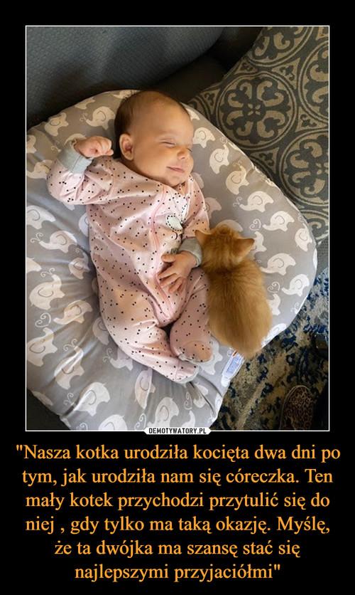 """""""Nasza kotka urodziła kocięta dwa dni po tym, jak urodziła nam się córeczka. Ten mały kotek przychodzi przytulić się do niej , gdy tylko ma taką okazję. Myślę, że ta dwójka ma szansę stać się najlepszymi przyjaciółmi"""""""