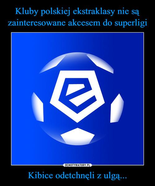 Kluby polskiej ekstraklasy nie są zainteresowane akcesem do superligi Kibice odetchnęli z ulgą...