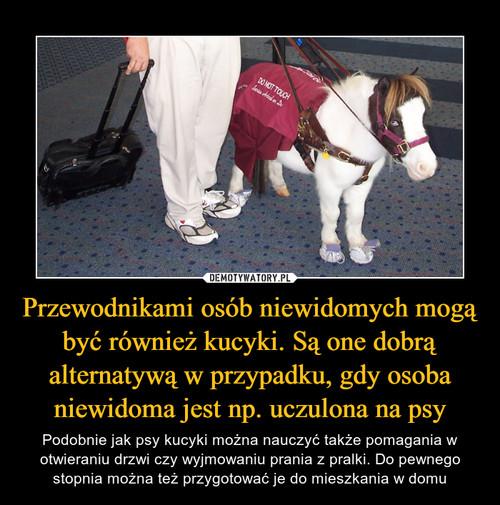Przewodnikami osób niewidomych mogą być również kucyki. Są one dobrą alternatywą w przypadku, gdy osoba niewidoma jest np. uczulona na psy