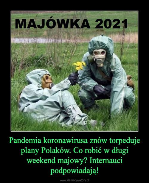 Pandemia koronawirusa znów torpeduje plany Polaków. Co robić w długi weekend majowy? Internauci podpowiadają!