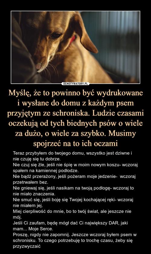 Myślę, że to powinno być wydrukowane i wysłane do domu z każdym psem przyjętym ze schroniska. Ludzie czasami oczekują od tych biednych psów o wiele za dużo, o wiele za szybko. Musimy spojrzeć na to ich oczami