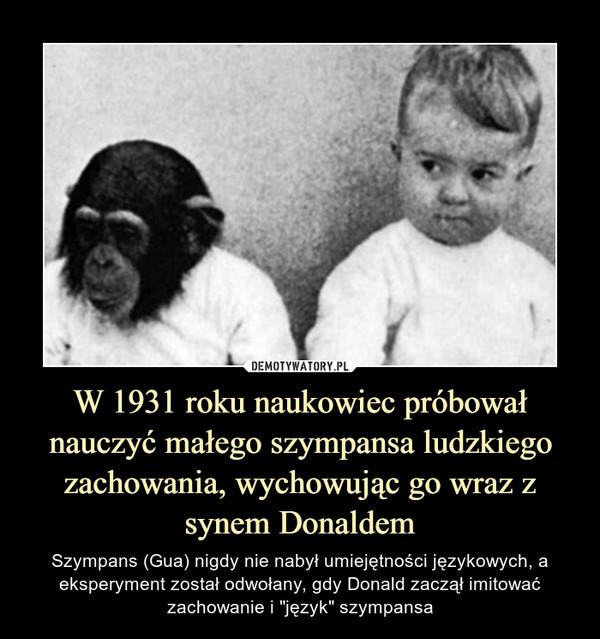"""W 1931 roku naukowiec próbował nauczyć małego szympansa ludzkiego zachowania, wychowując go wraz z synem Donaldem – Szympans (Gua) nigdy nie nabył umiejętności językowych, a eksperyment został odwołany, gdy Donald zaczął imitować zachowanie i """"język"""" szympansa"""