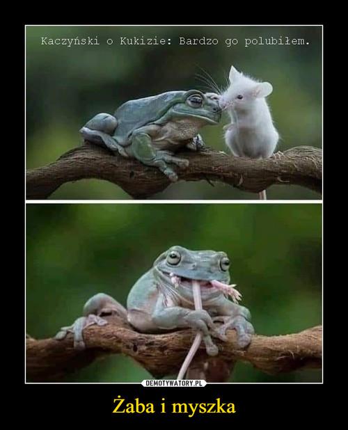 Żaba i myszka