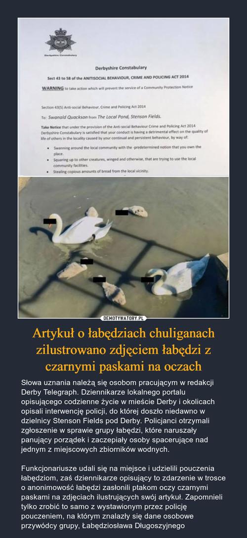 Artykuł o łabędziach chuliganach zilustrowano zdjęciem łabędzi z czarnymi paskami na oczach
