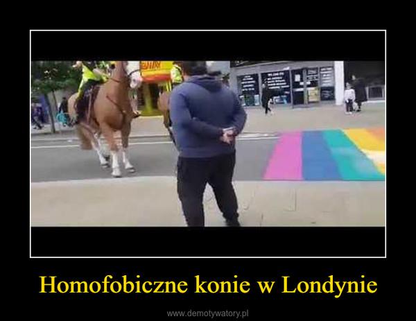 Homofobiczne konie w Londynie –