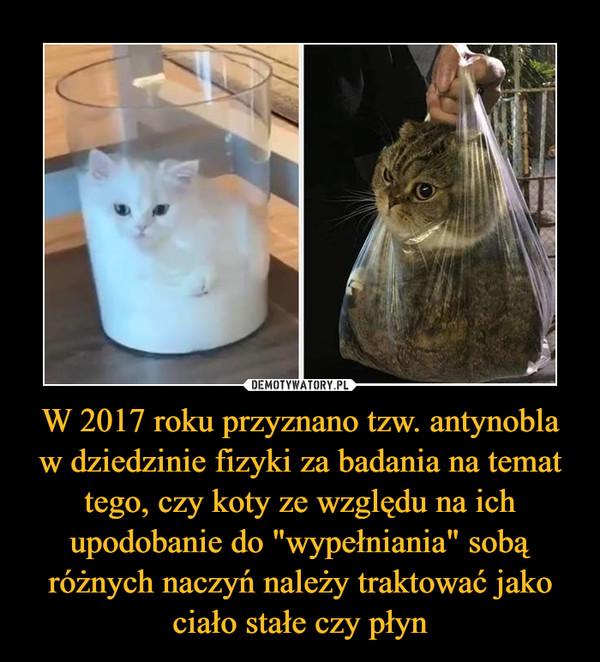 """W 2017 roku przyznano tzw. antynobla w dziedzinie fizyki za badania na temat tego, czy koty ze względu na ich upodobanie do """"wypełniania"""" sobą różnych naczyń należy traktować jako ciało stałe czy płyn –"""